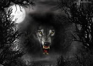 Obrazek użytkownika wilk na kacapy
