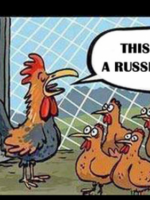 Putin-lis jako rozjemca w kurniku