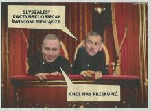 Schetyna i Broniarz - czyli Kaczyński przekupuje świnie